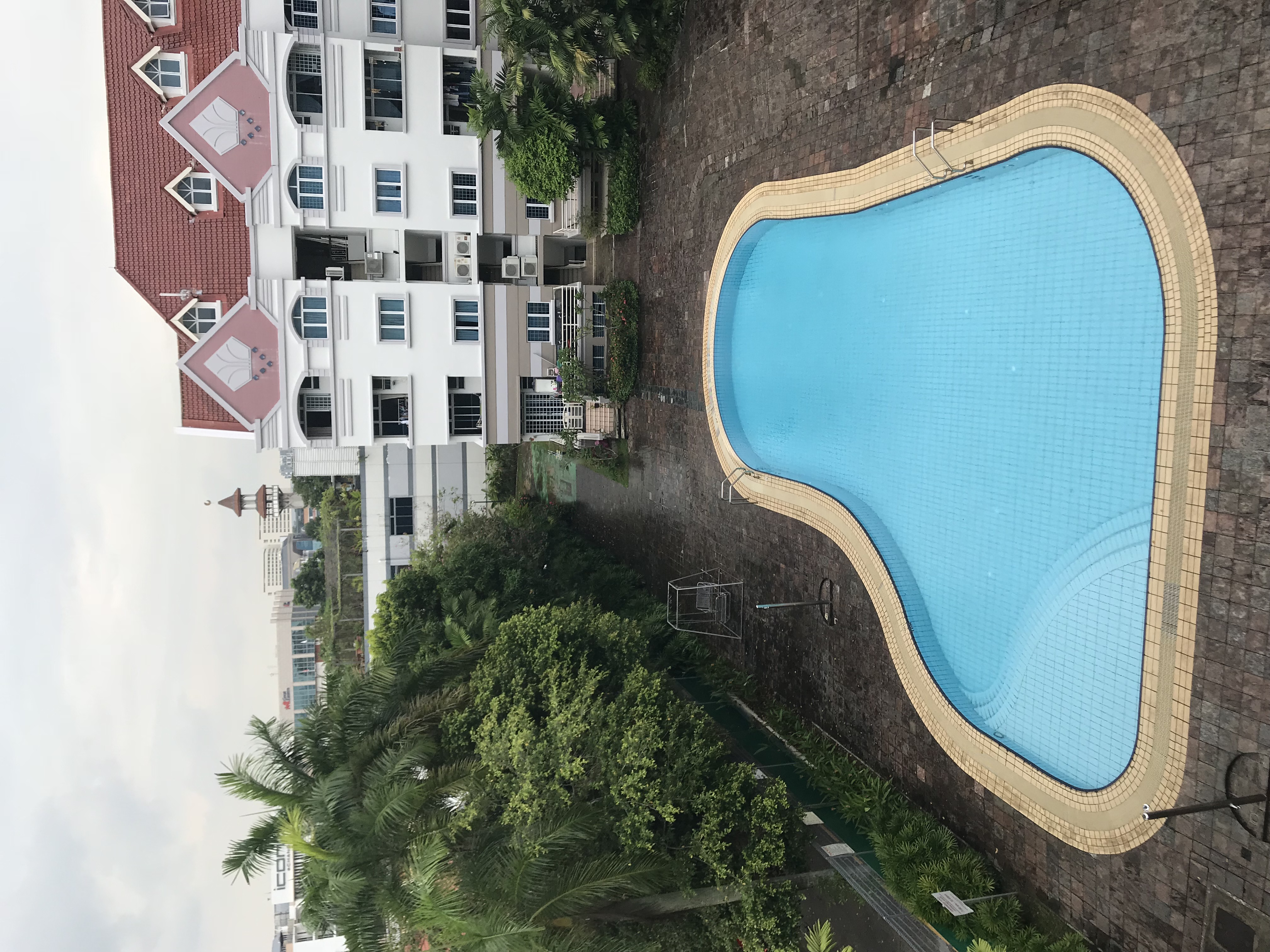 50414-swimming.JPG